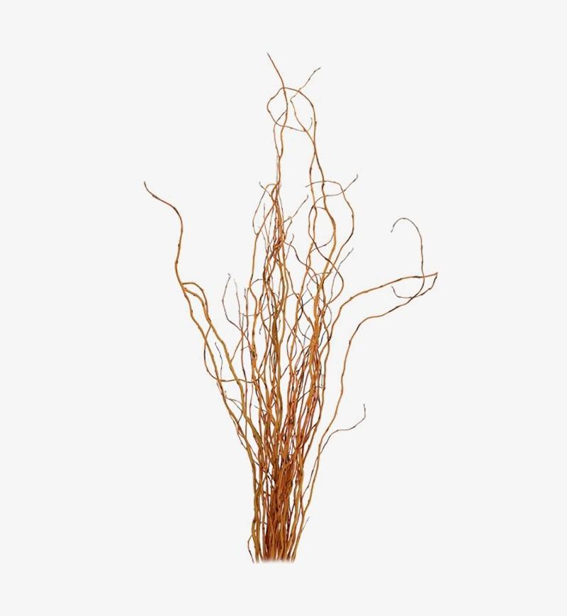 Buy Elephant Ear Leaf For Tropical Decor