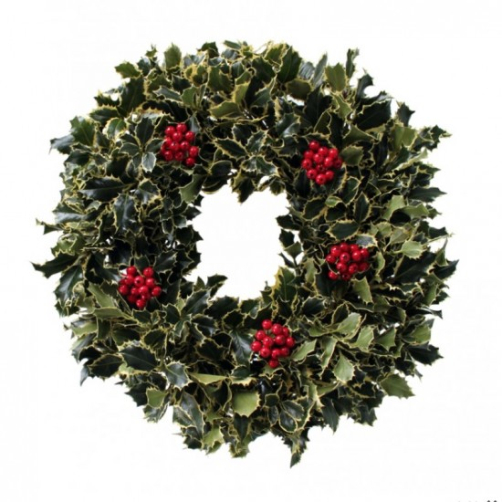 Holly Variegated Wreath
